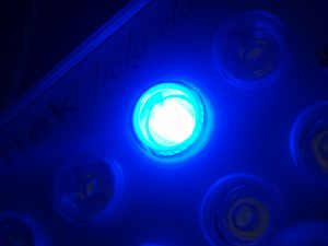 Power LED: Superior PUR, Spektrum, lan Rendering Warna
