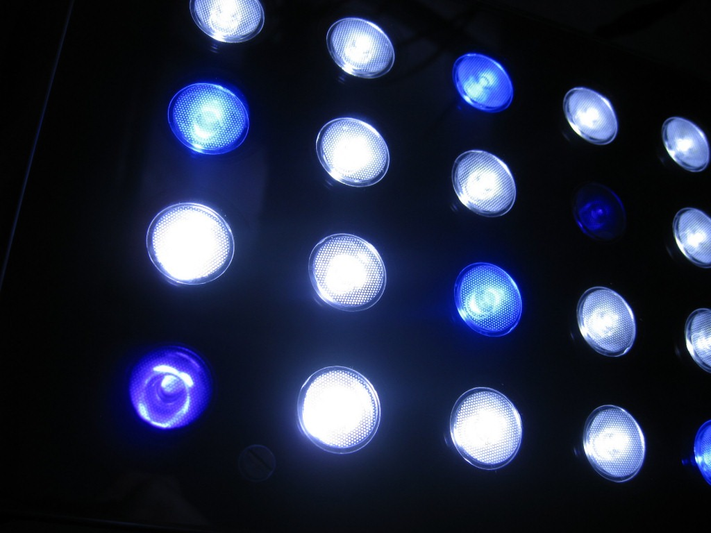 Kustom Orphek PR-156W LED Light dengan UV / Violet emitter