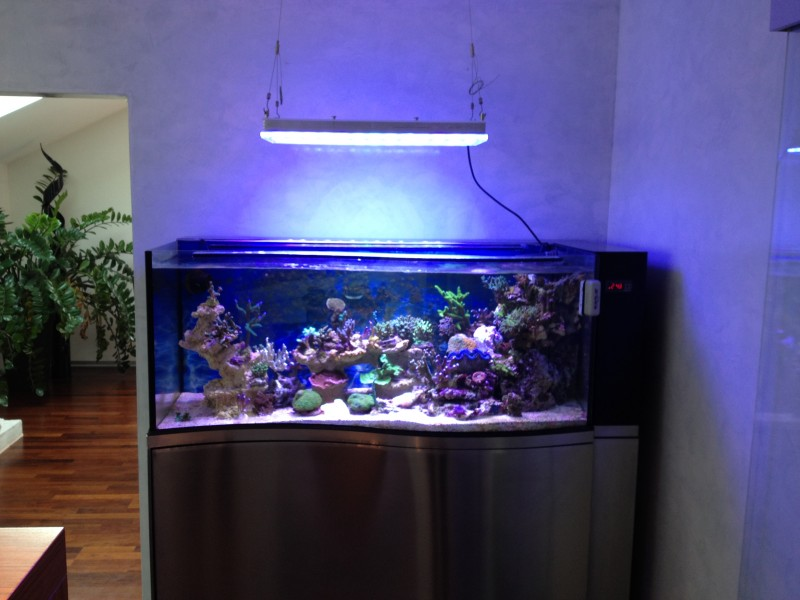 BUY_LED_Aquarium_Li​​ghting_Liechtenstein