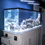 Orphek-aquarium-led-verlich-PR156-UV