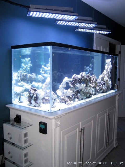Orphek-aquarium-led-ligh-PR156-UV