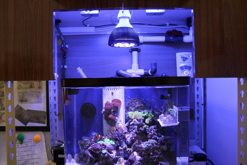 Orphek PR25 reef aquarium led lighting