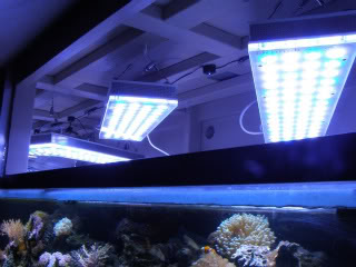 Orphek aquarium eclairage led