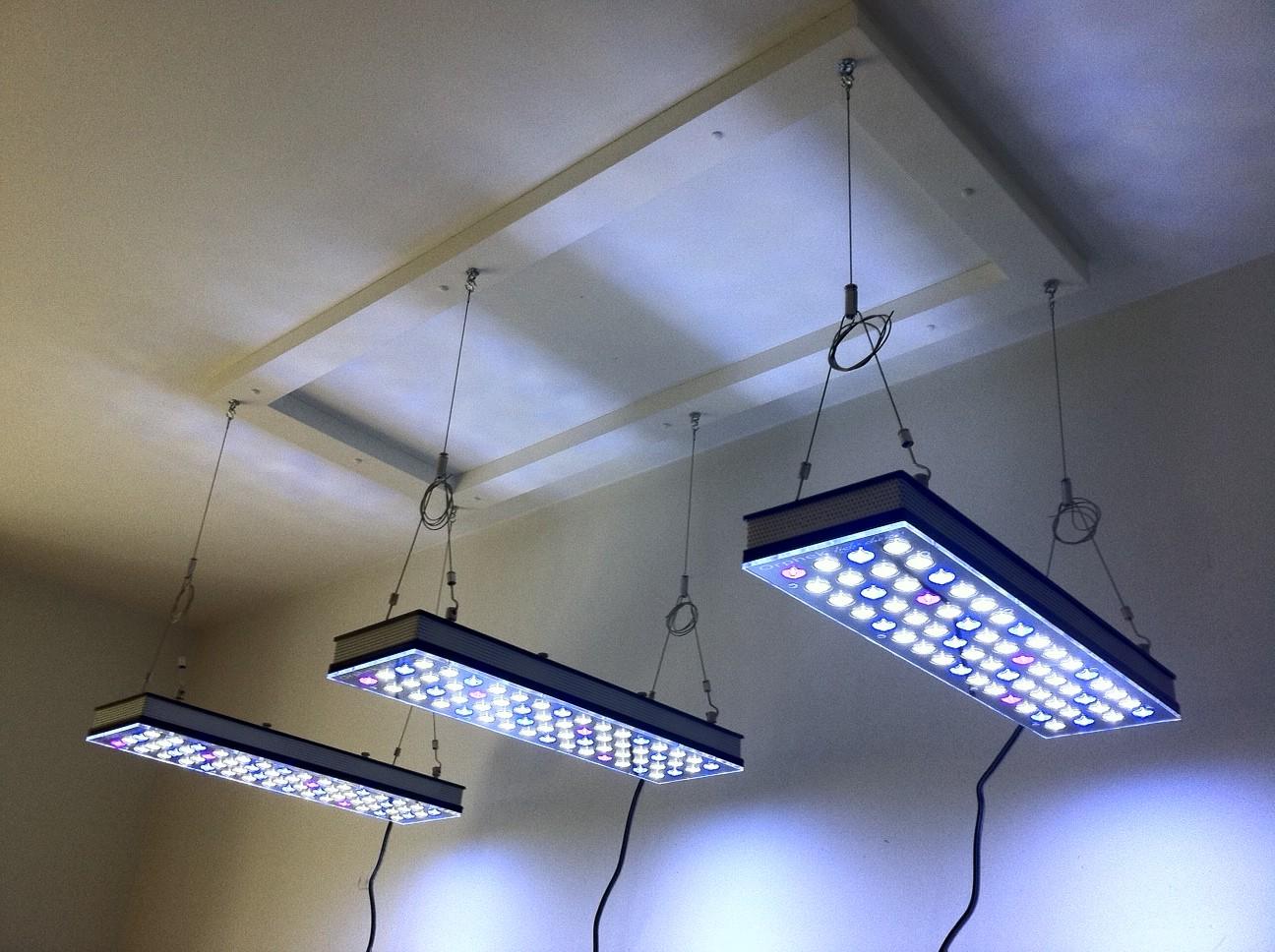 Orphek PR156 Riffaquarium LED-Beleuchtung