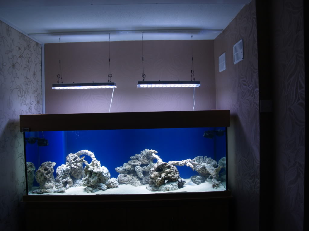 Orphek PR156 dẫn chiếu sáng