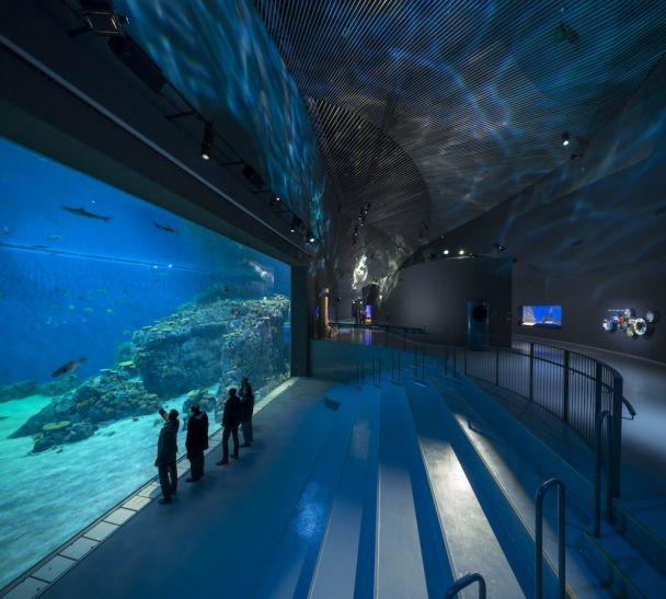 Freshwater Public Aquarium : Orphek ??? LED ?? ?? ?????!