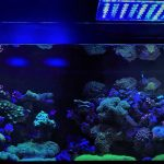 led-acquario-light