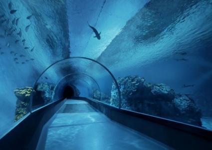 Tunnel_National_Aquarium_Denmark