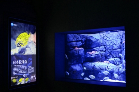 reef-marine-aquarium-LED-light (5)