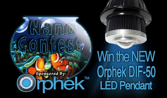 2012-Nano-Aquarium-build-orphek