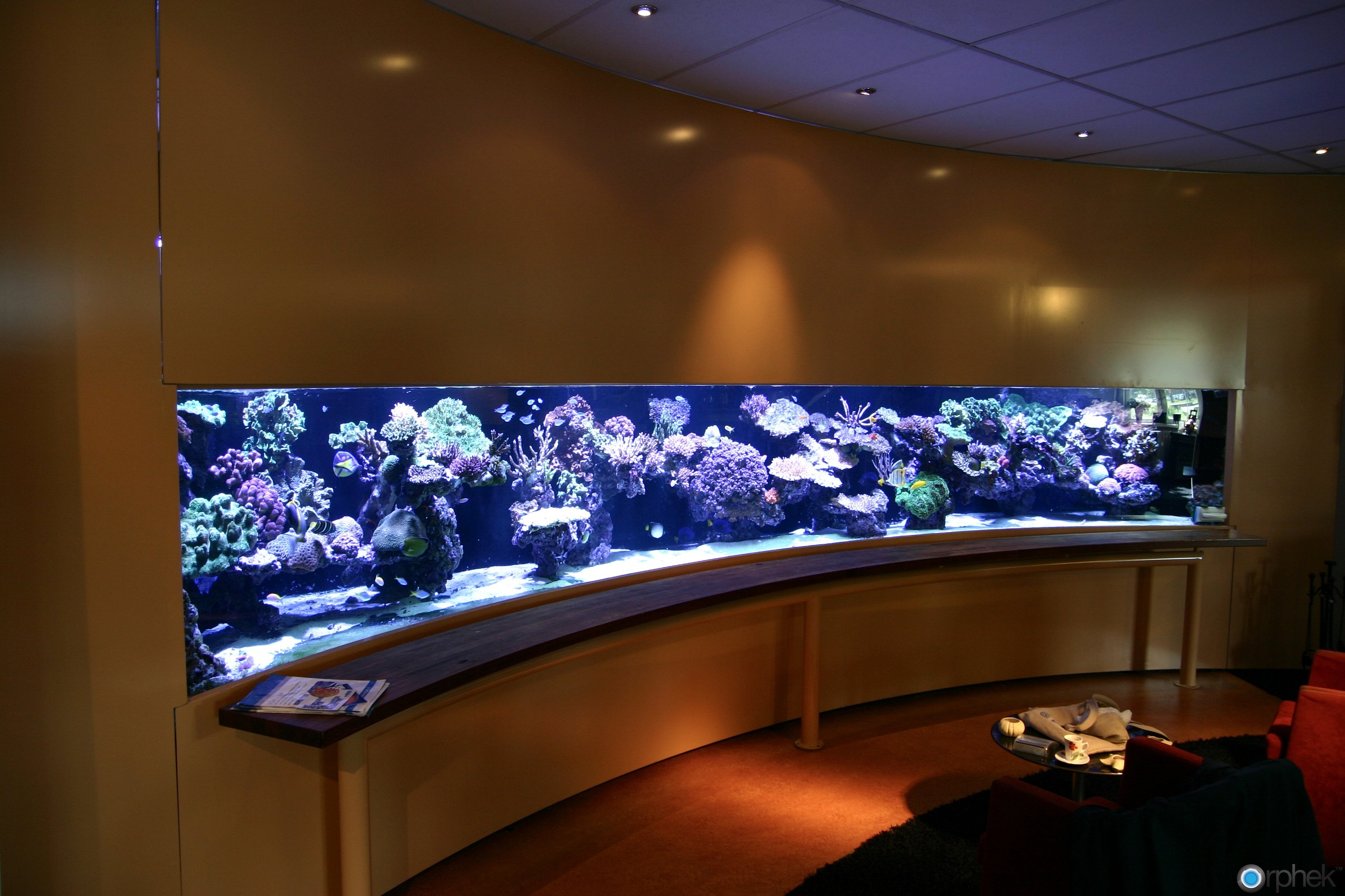 biggest home aquarium