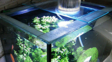 planted-aquarium-LED-Lights