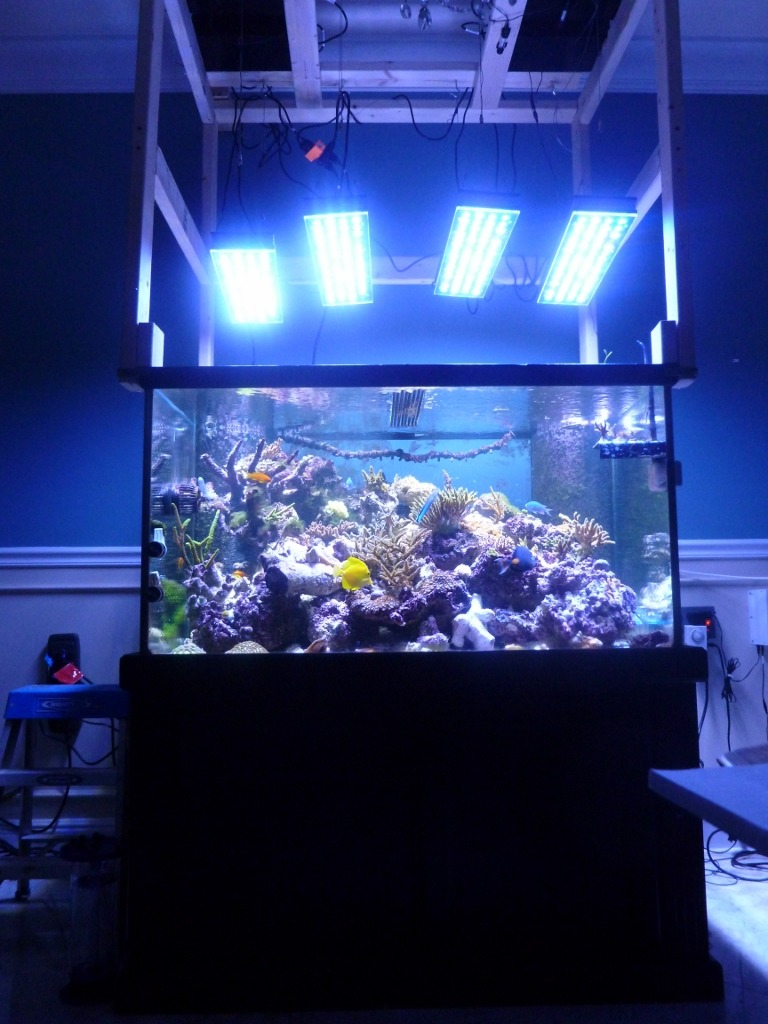 Aquarium with orpgek led lighting