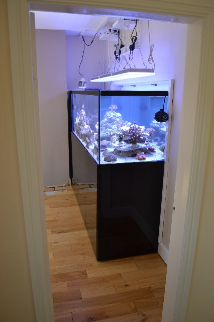 éclairage de l'aquarium LED