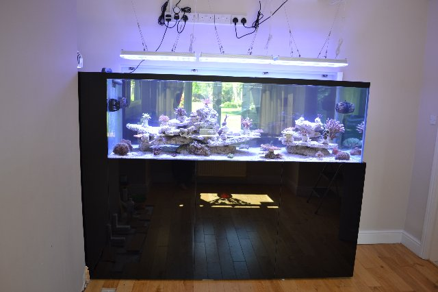 LED for aquarium