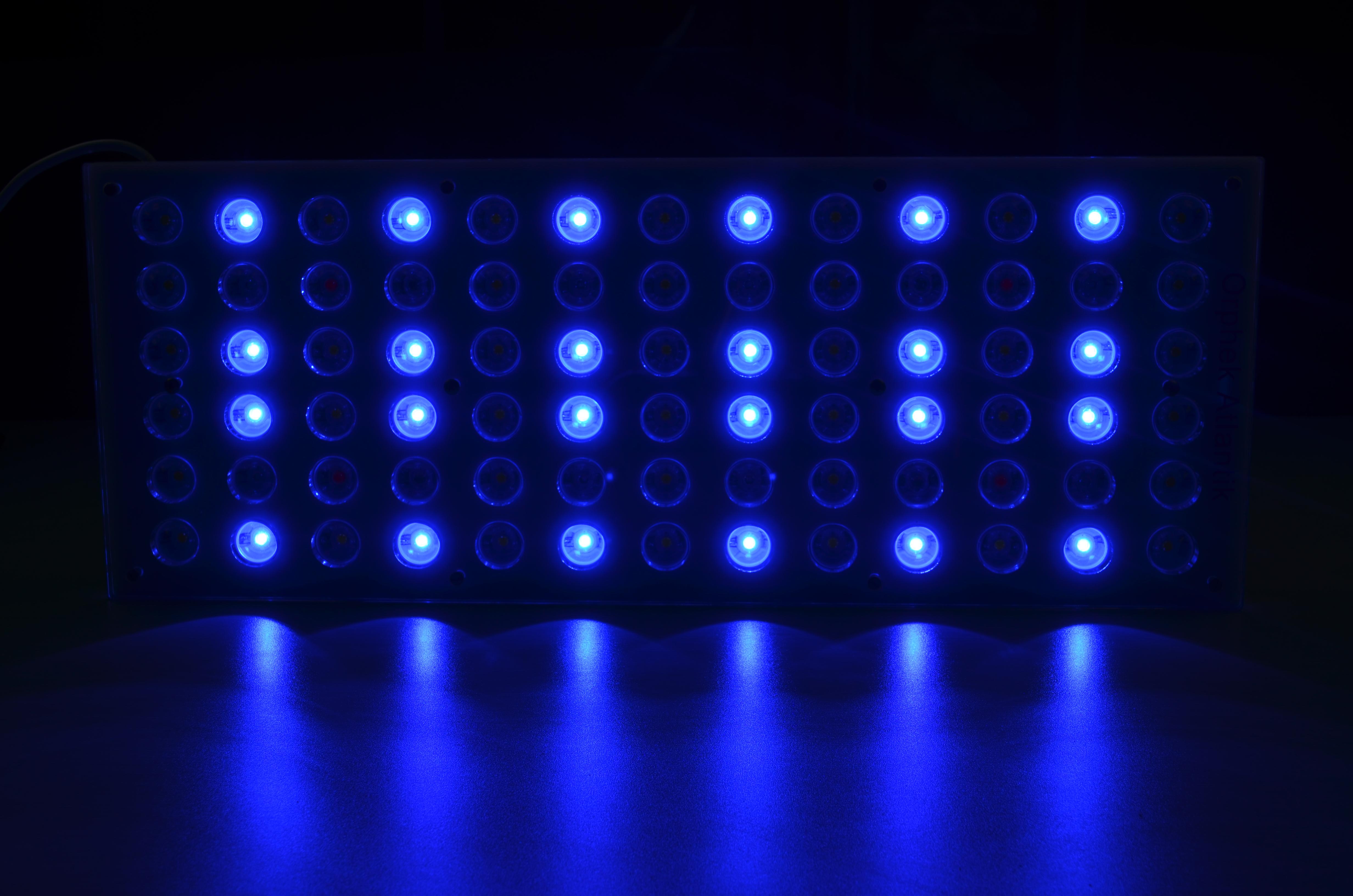 acquario di illuminazione a led orphek dell 39 acquario di illuminazione a led. Black Bedroom Furniture Sets. Home Design Ideas