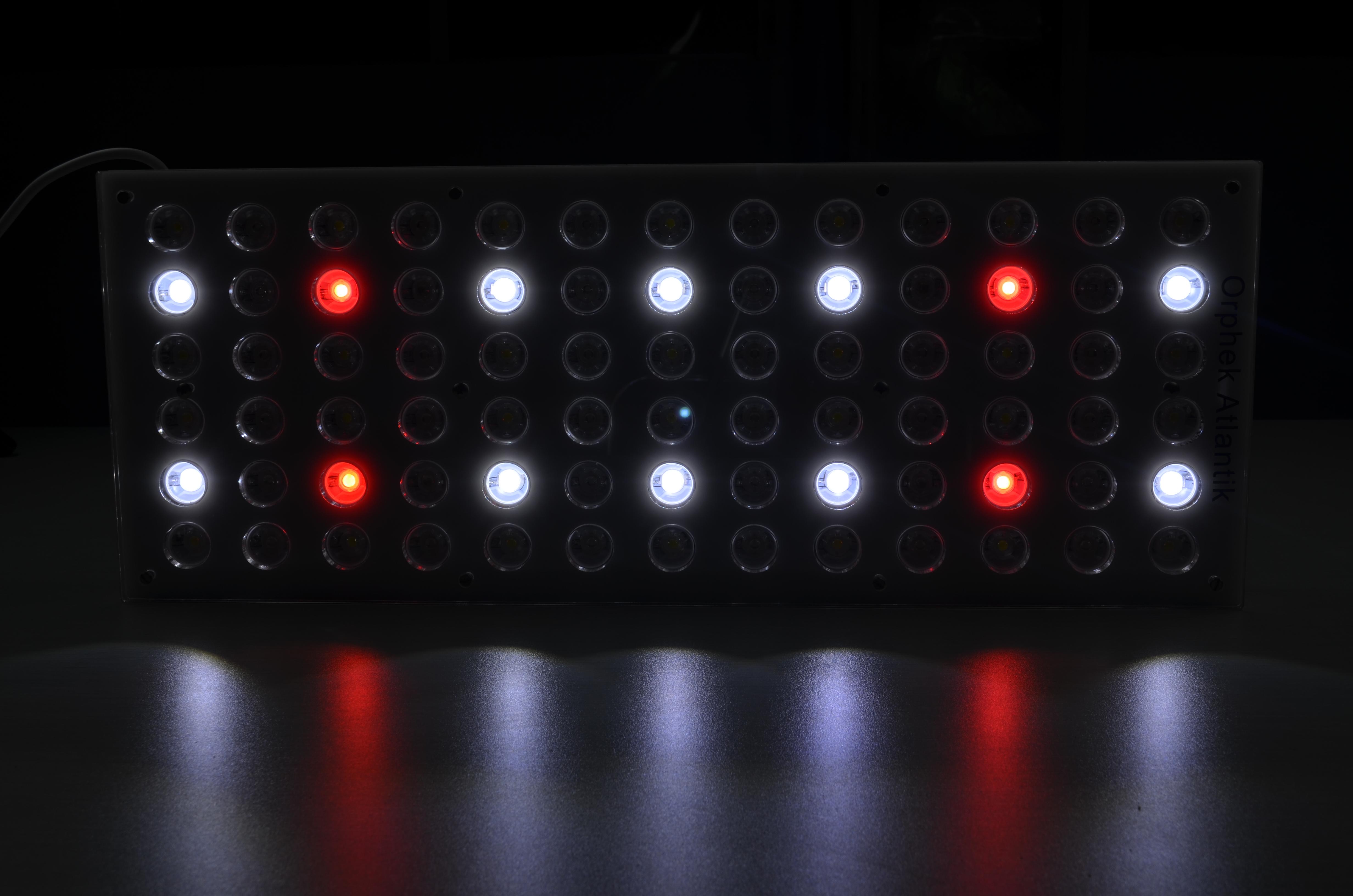 Acquario di illuminazione a led u2022 orphek dellacquario di