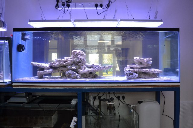 Orphek Atlantik aquarium led lighting in the UK ATLANTIKS LED ARRIVE IN the UK
