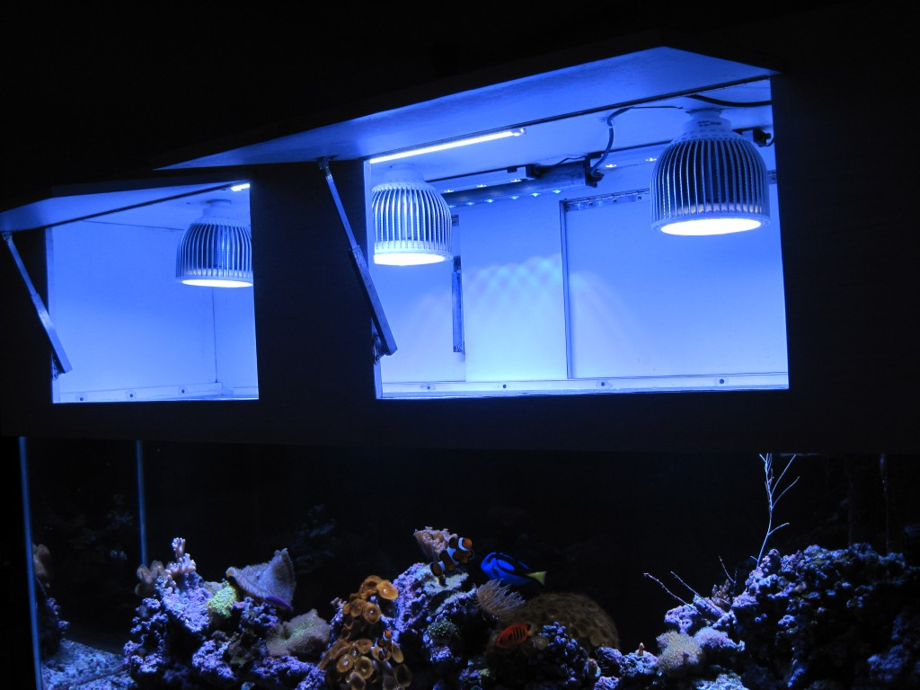 Orphek PR72 reef led lighting