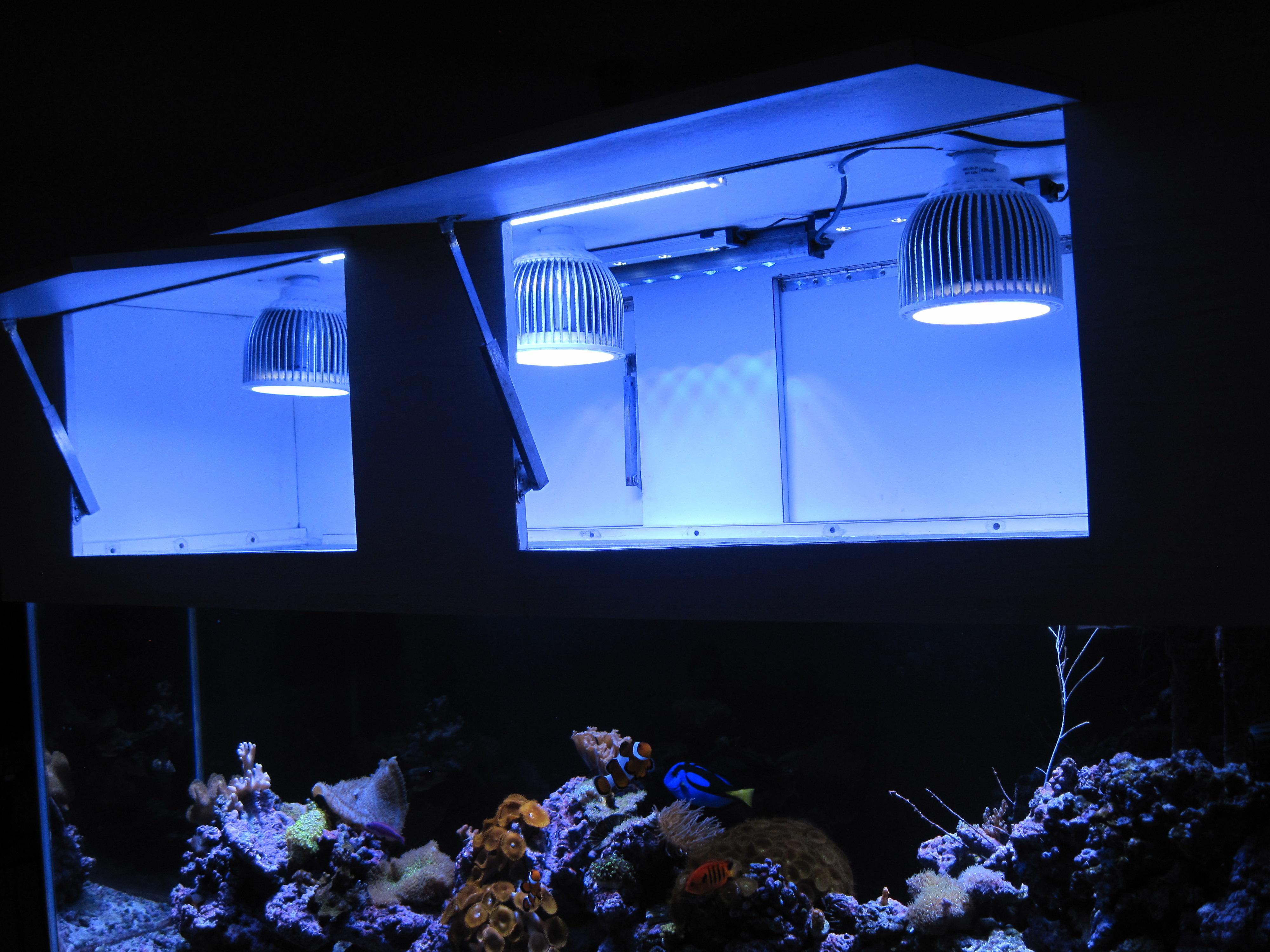 reef aquarium sources before you can trust this LED Aquarium Lighting ...