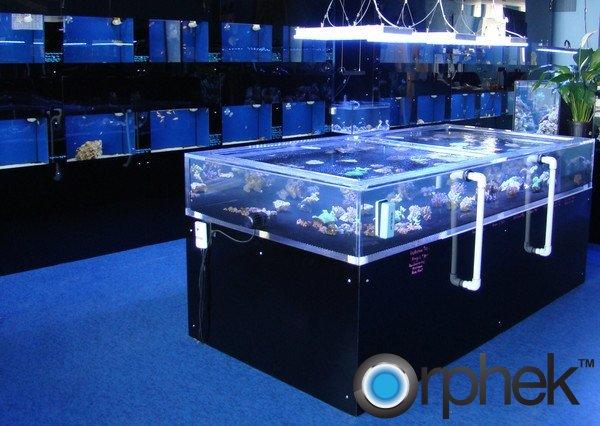 orphek-Atlantik
