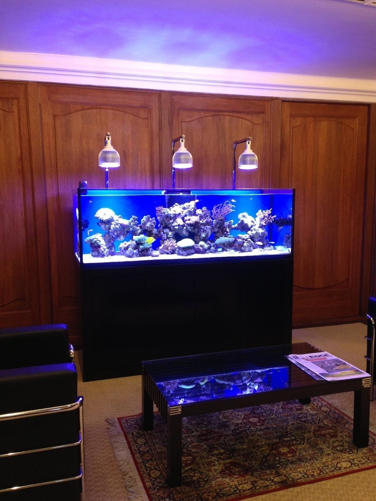 led vs metal halide orphek aquarium led beleuchtung. Black Bedroom Furniture Sets. Home Design Ideas