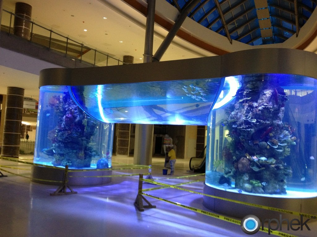 Sambil Shopping mall Sto. Domingo Aquarium, Light Orphek Led