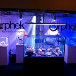 éclairage LED aquarium 2013