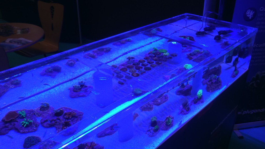 Paris_Pet_Expo_orphek_atlantik_LED