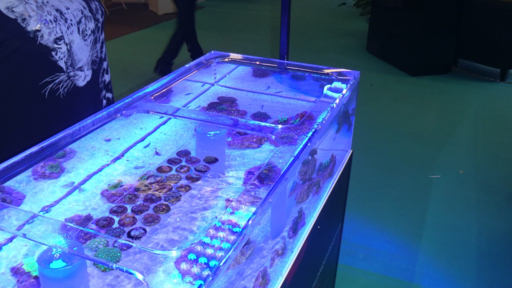 Paris_Pet_Expo_orphek_atlantik_LED_lighting