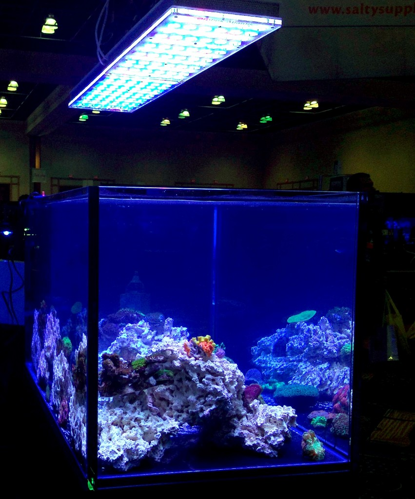 LED éclairage d'aquarium