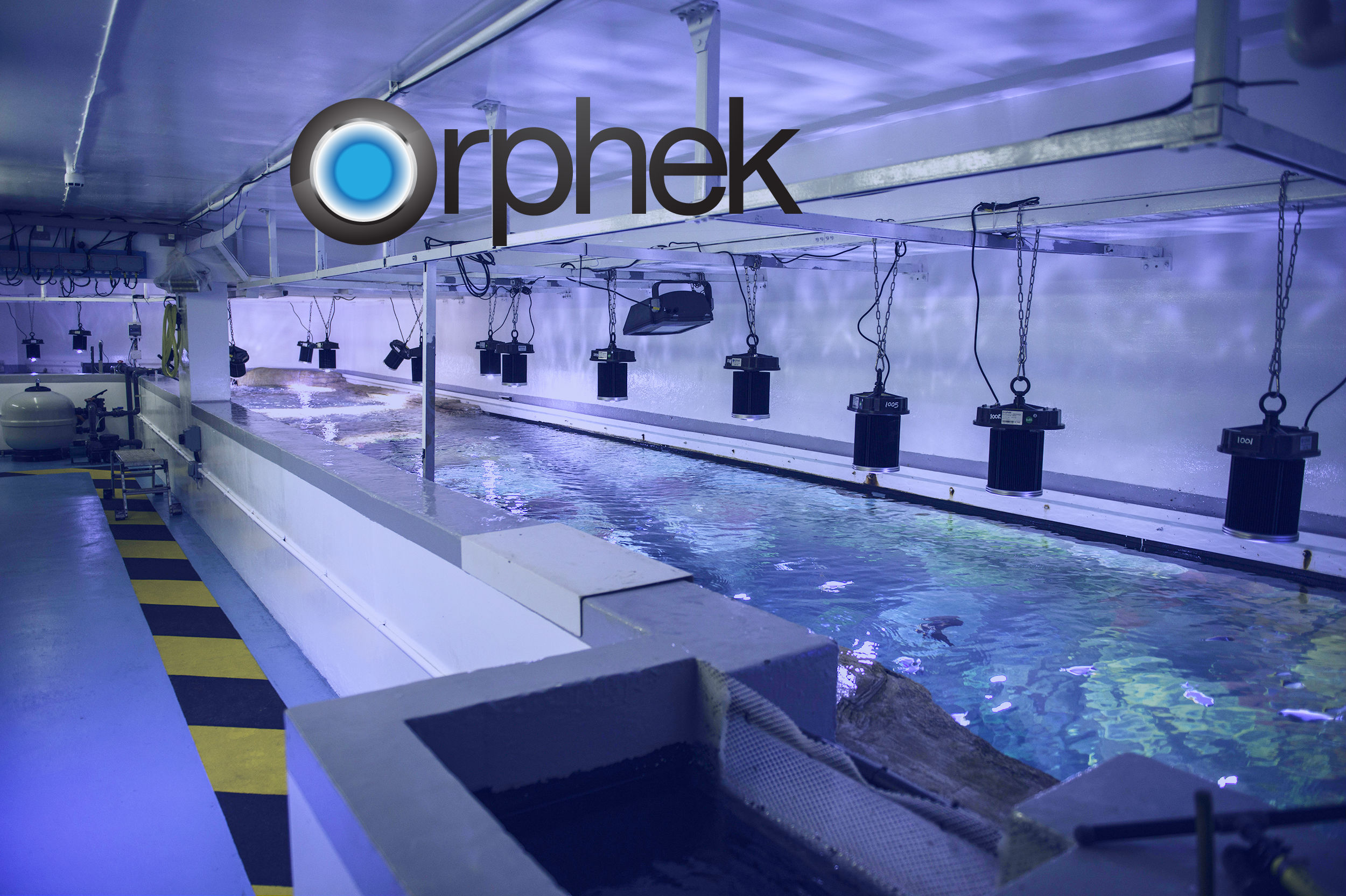 Led Lighting For Public Aquarium Orphek