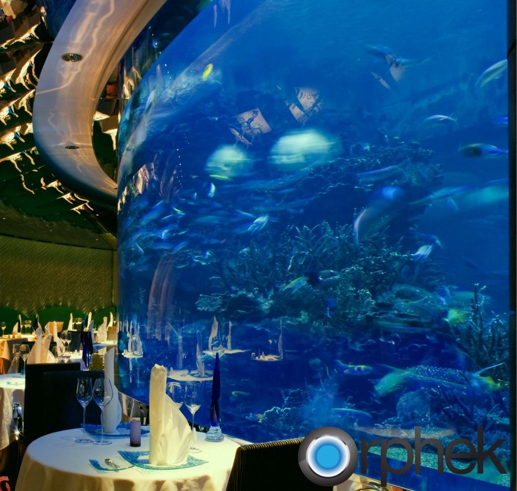 Общественный аквариум освещение