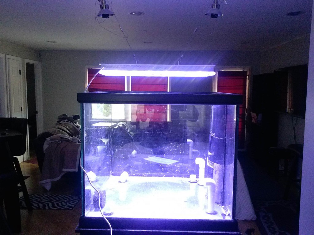 Atlantik-v2.1--wifi LED-aquarium-verlichting