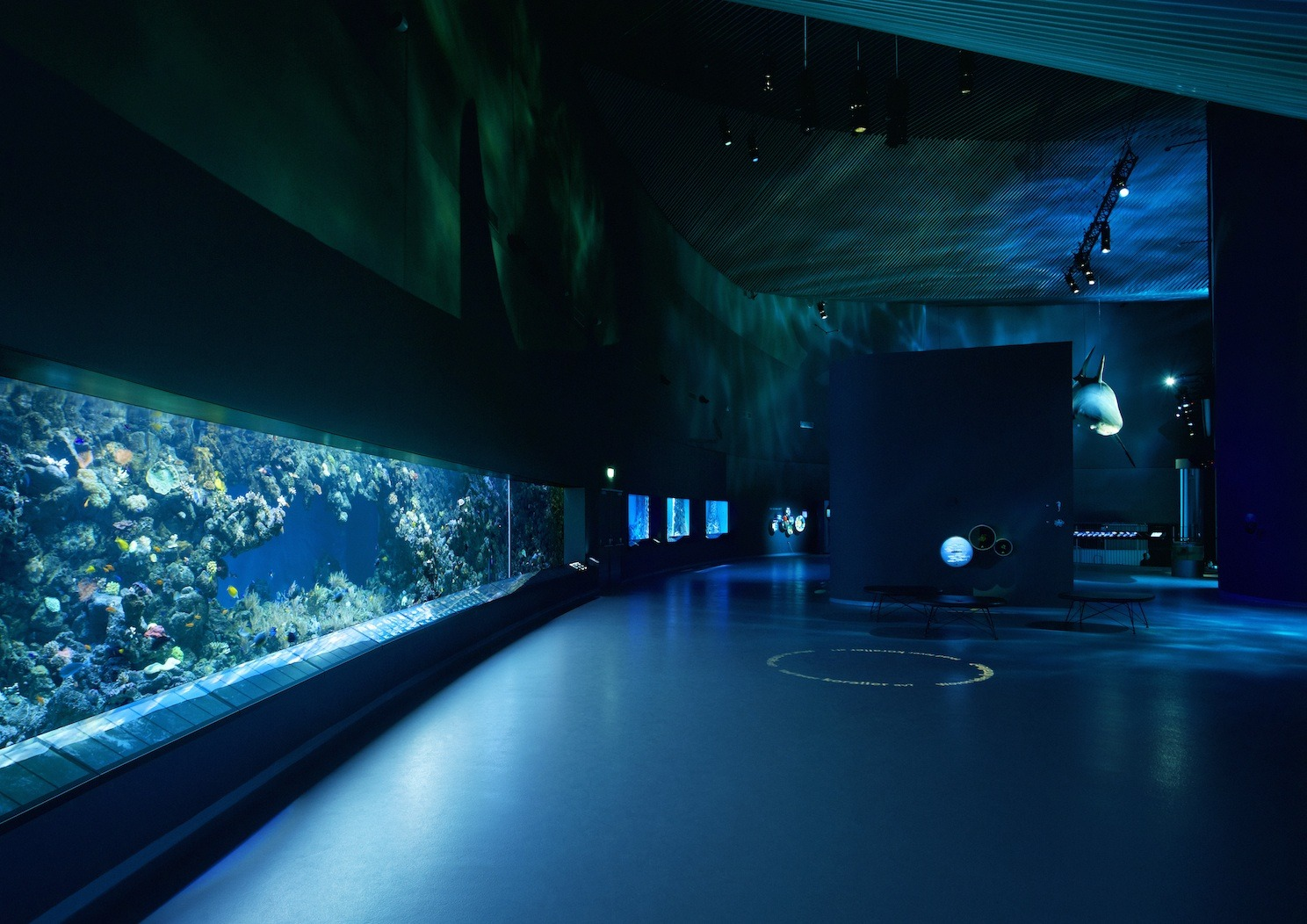 blue planet Denmark public aquarium