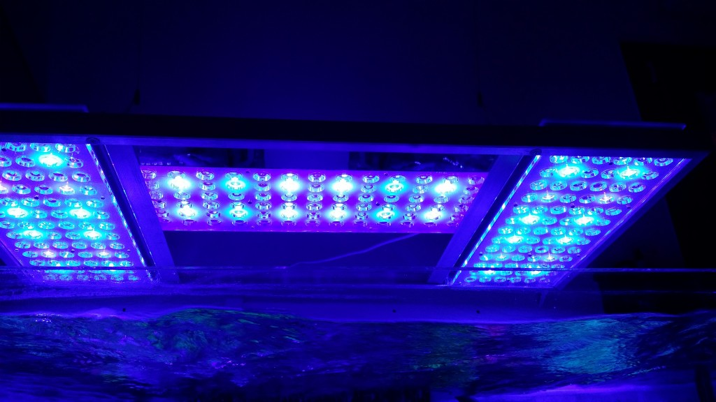 -Lights Orphek-Atlantik-LED