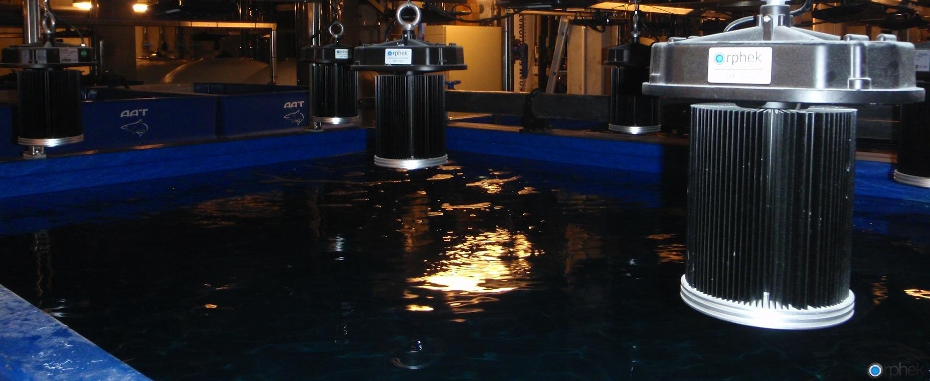 aquarium-led-lighting-public-aquarium-copenhagen.jpg