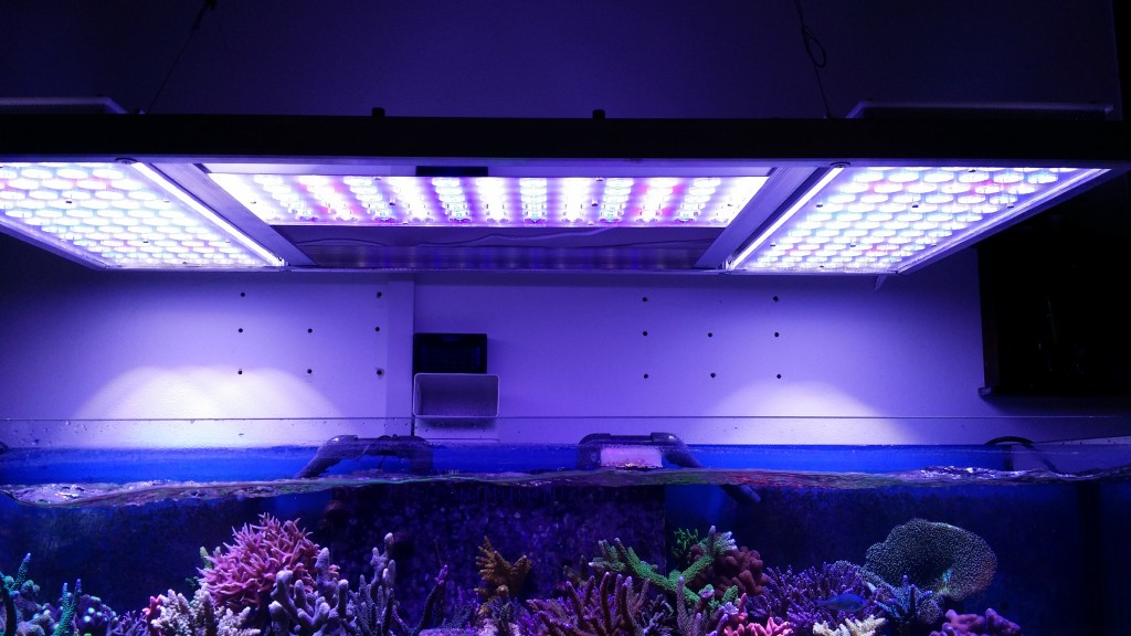 fixture-LED-reef lighting
