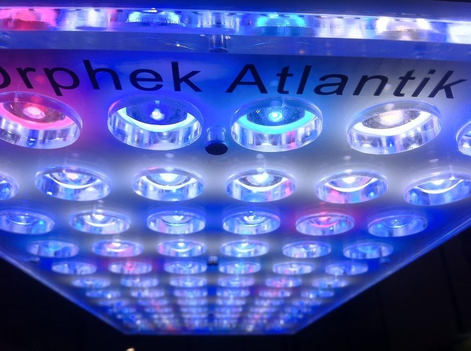 Orphek-الأطلسي Atlantik-v2-1-2014