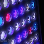 Orphek-Atlantik-Compact-LED-light-aquanerd