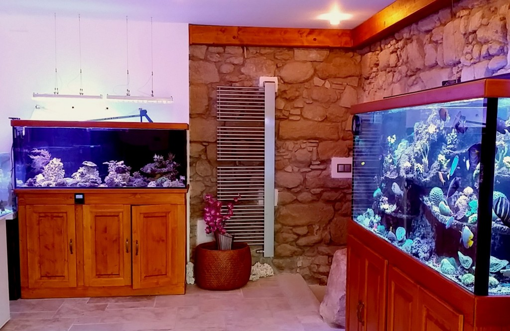 New Store in der Tschechischen Republik-MARINE-AQUATICS