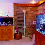 New Store in Czech Republic -MARINE-AQUATICS