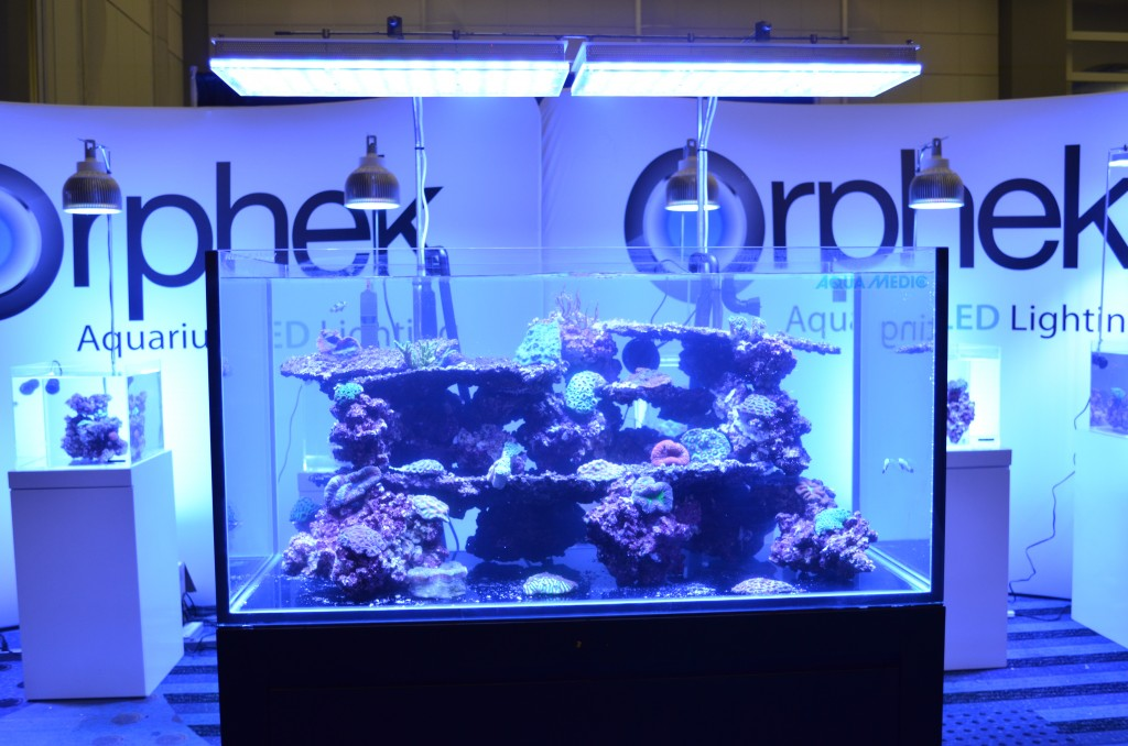 Reef LED Aquarium Lighting Macna 2014