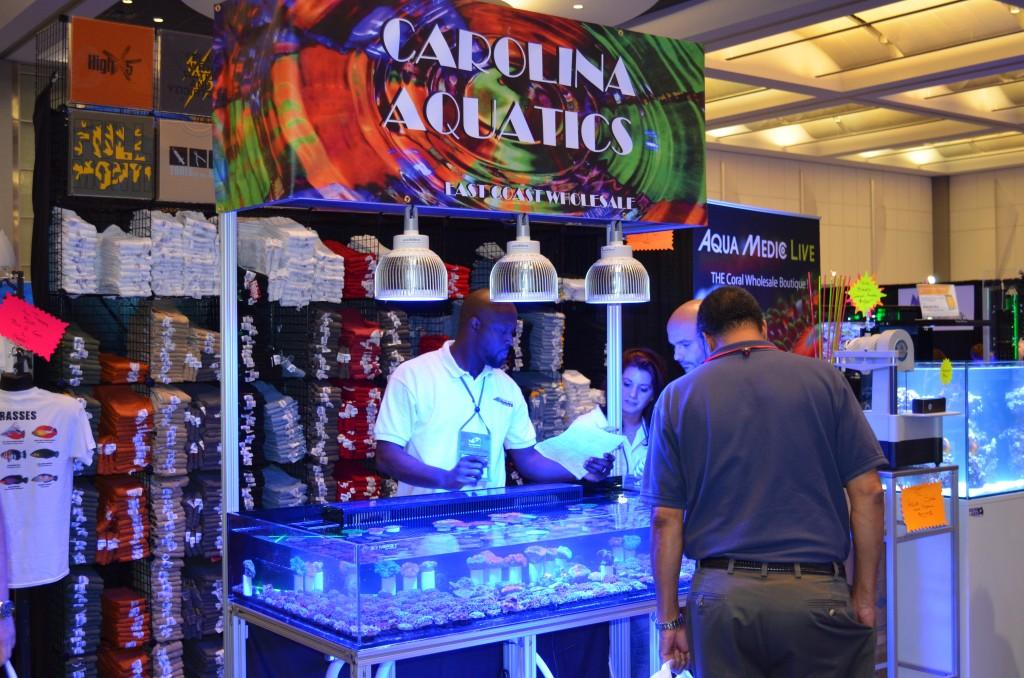 Carolin-Aquatics-Atlantik-Orphek-Atlantik-Pandant