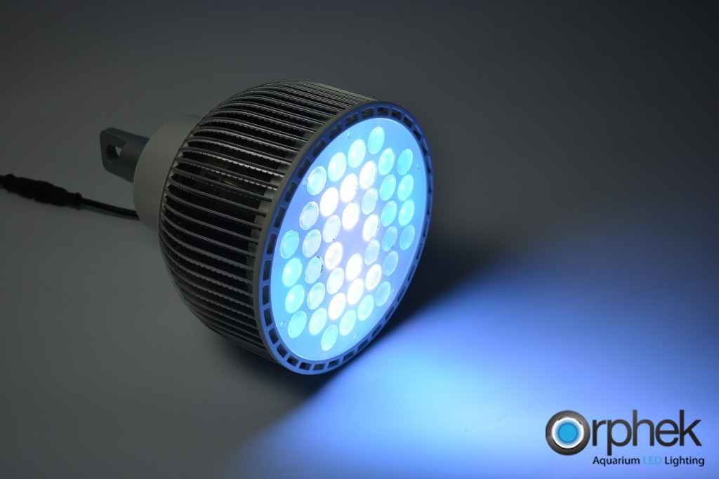 Lampu-Orphek Atlantik-Loket LED Reef Aquarium