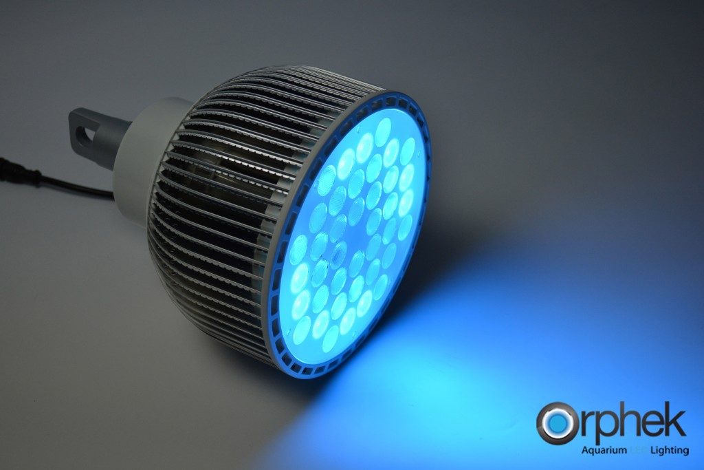 cyan clair LED Aquarium