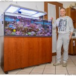 Gianluca outstanding Reef Aquarium