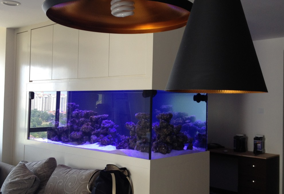 Malaysia Reef Aquarium LED lighting