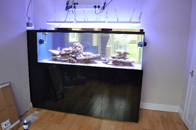 Reef Aquarium LED belysning Uk 04-05-13