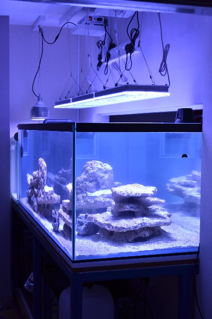 Reef akvarium LED Belysning Uk